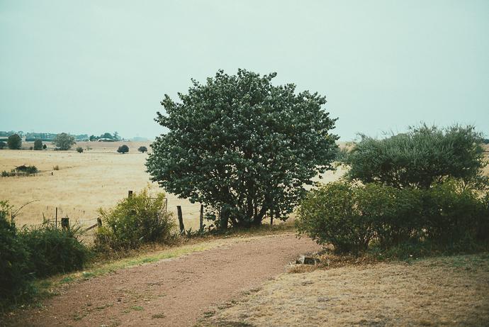 Benanna2014-Blog-26.jpg