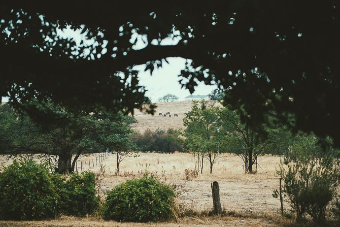 Benanna2014-Blog-41.jpg