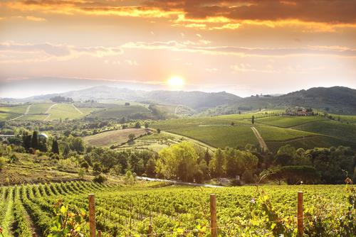 tuscany italy.jpg