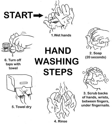 washing hands how to.jpg