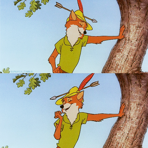 Photo From-   the-fox-robin-hood.tumblr.com