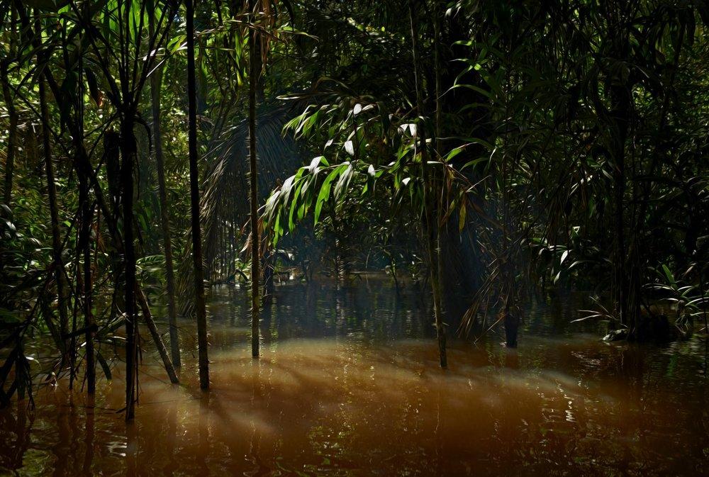 peruu amazonas