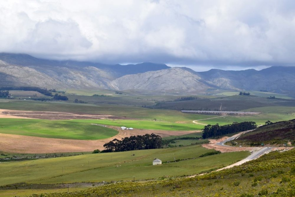 Hemel en Aarde valley. Photo:Triin Kambek