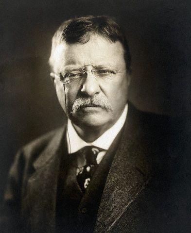Theodore Roosevelt - U.S. President