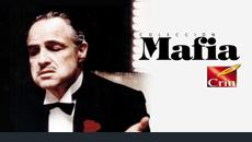 2005 / Crin. Mafia
