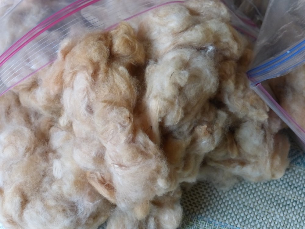 A bag full of Ecuadorean brown cotton. It has a thick texture.