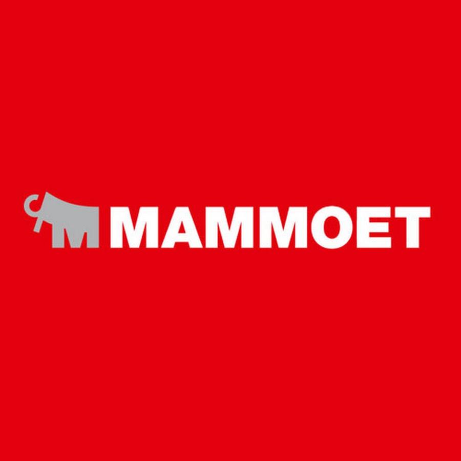 Mammoet (2).jpg