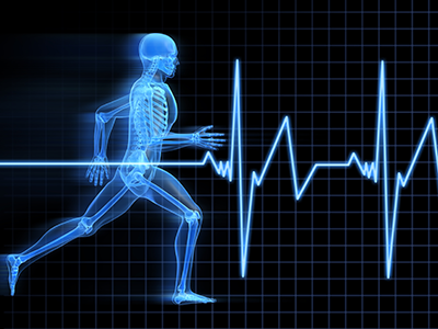 Sport, Exercise & Health Science