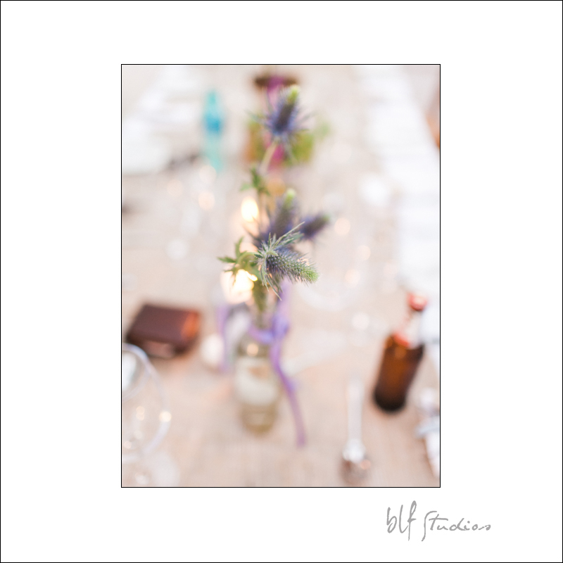 Wedding at Rijk's Country House in Tulbagh