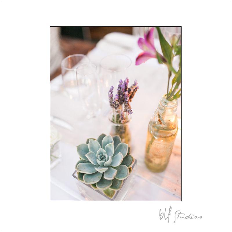 Wedding at Rijk's Country House in Tulbagh 27