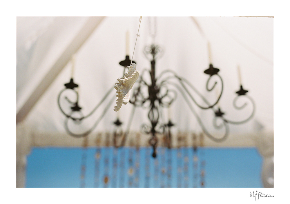 beach wedding details.jpg