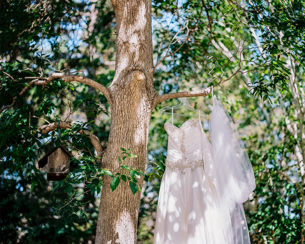 Kirstin+Edward|Married-Wedding-Grotto-CooksCreek-Manitoba-EvergreenVillage-ClassyWedding-HighEndWedding-LuxuryWedding-FineArtWedding-Winnipeg-WinnipegWeddingPhotographer-001.jpg