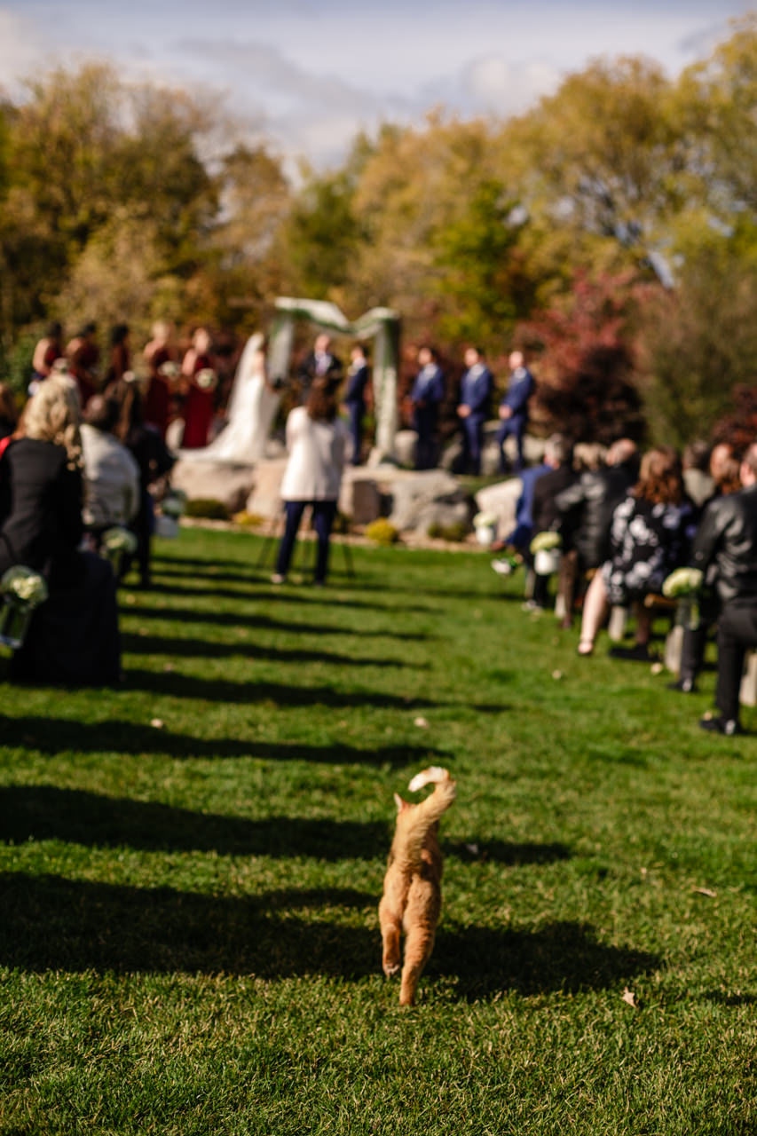 CarrieyAndCorey-Married-Wedding-HawthornEstatesWedding-WinnipegManitoba-CountryWedding-AutumnWedding-Fall-OutdoorWedding-blfStudios-Tony-016.jpg