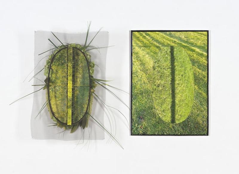 Tantra Verde díptico, 2011 - 2012