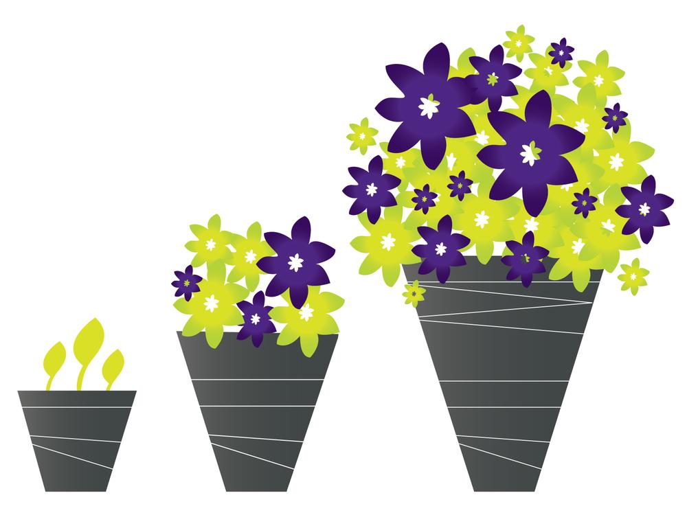 Grow-Wealth-Graphic.jpg