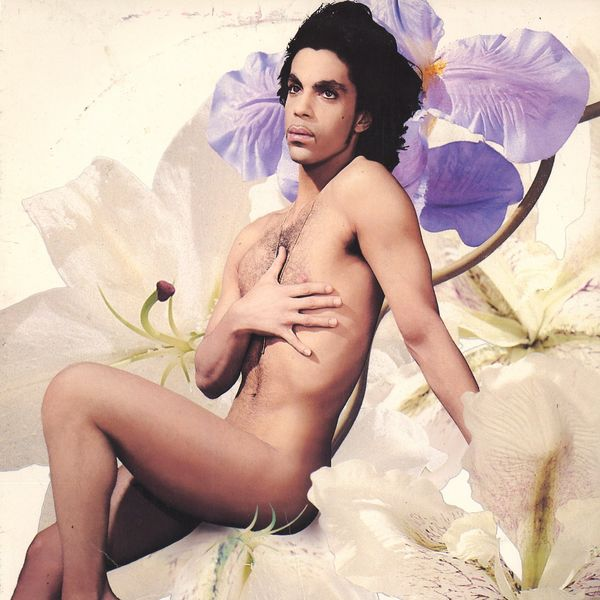 "The cover of ""LoveSexy"", Prince my anti-hero."