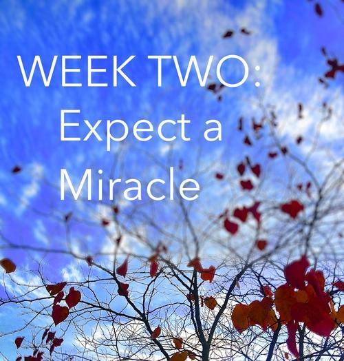 explore deeply week 2