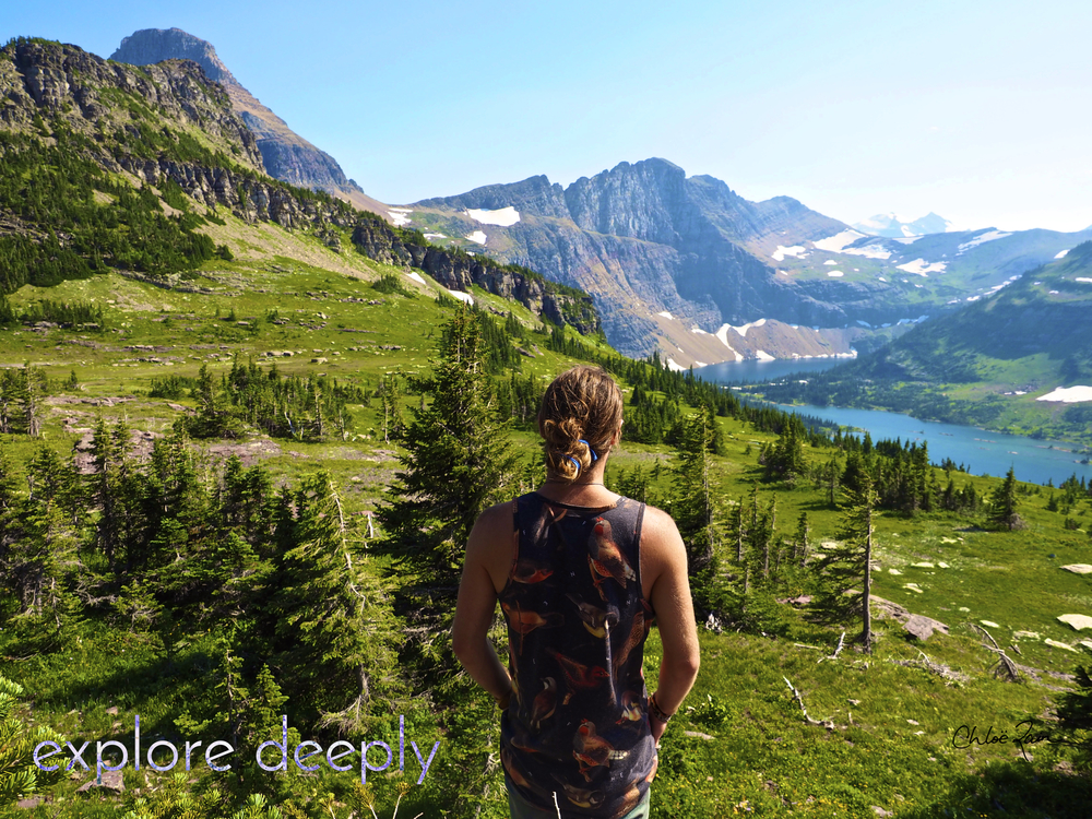 Logan's Pass : Glacier National Park