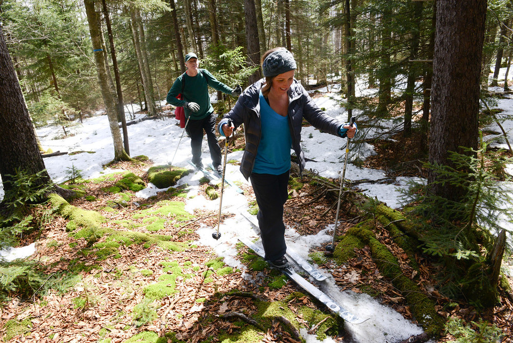 Final Spring Ski, on the last bits of snow March 22nd, 2015.