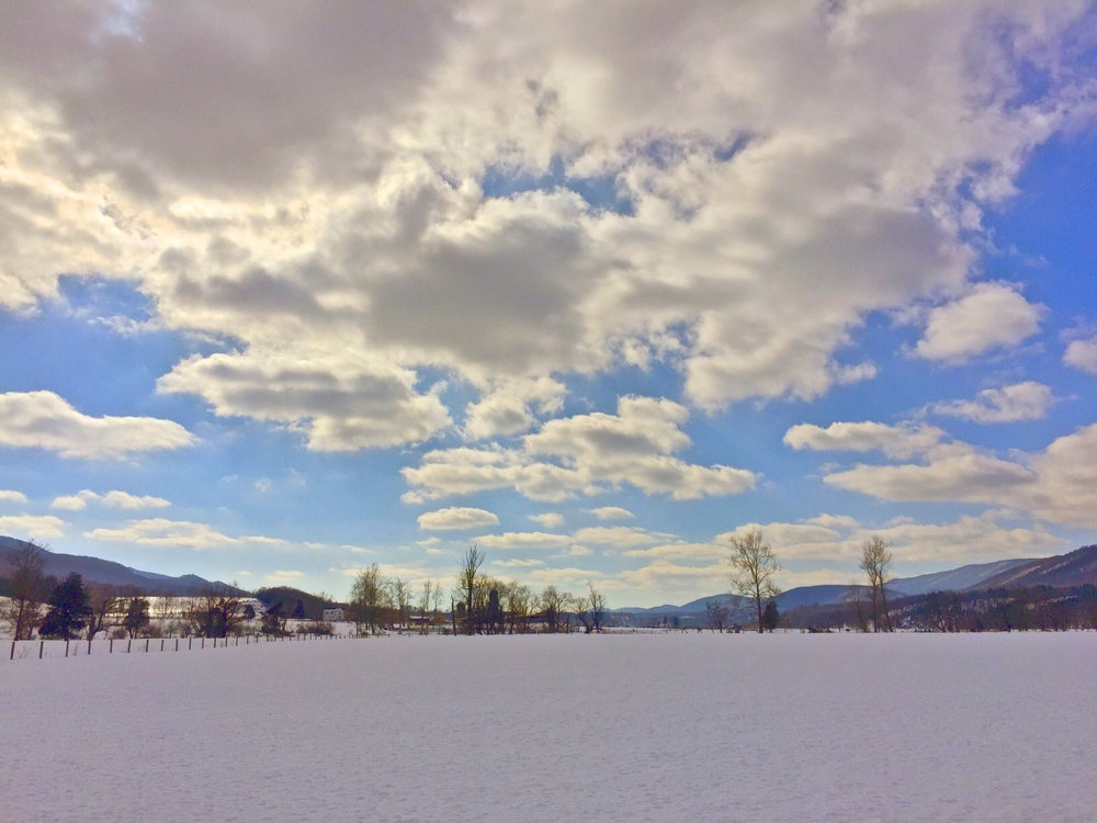 White Grass Ski Touring Center Explore Deeply Bald Knob