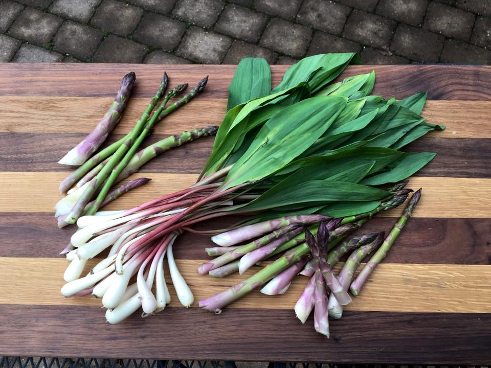 Fresh ramps picked locally for dinner in the award winning kitchen on retreat.