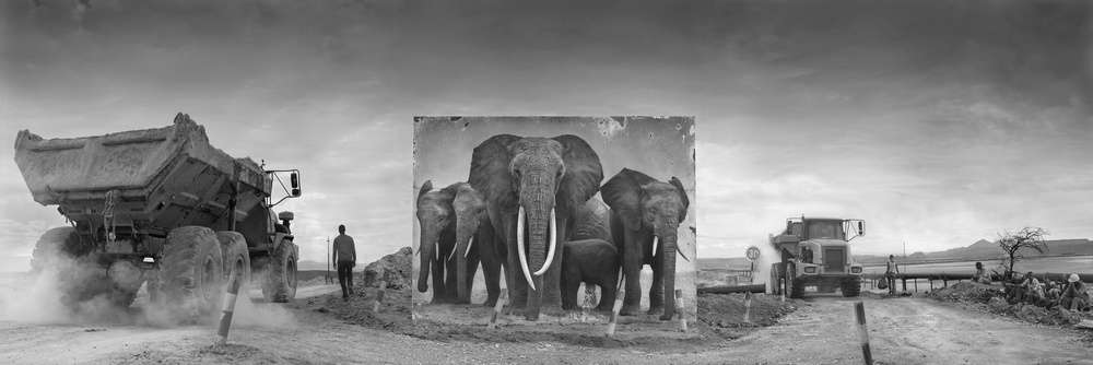 ROAD JUNCTION WITH QUMQUAT & FAMILY, 2014 © Nick Brandt
