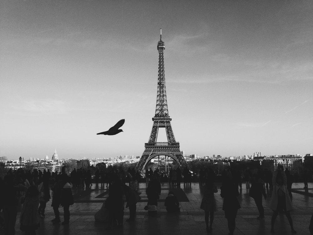 Fearing Paris Poem
