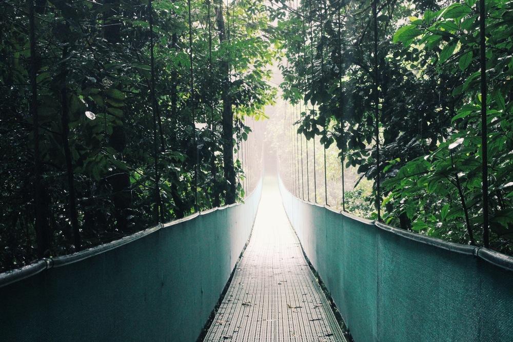 The Hanging Bridges