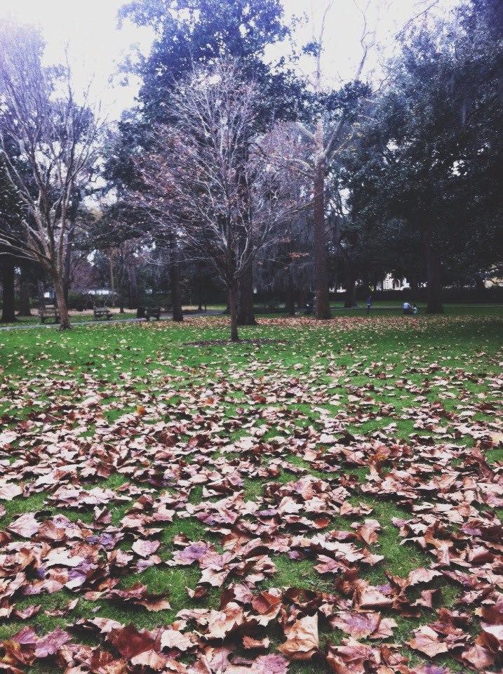 Forsyth Park, Savannah GA