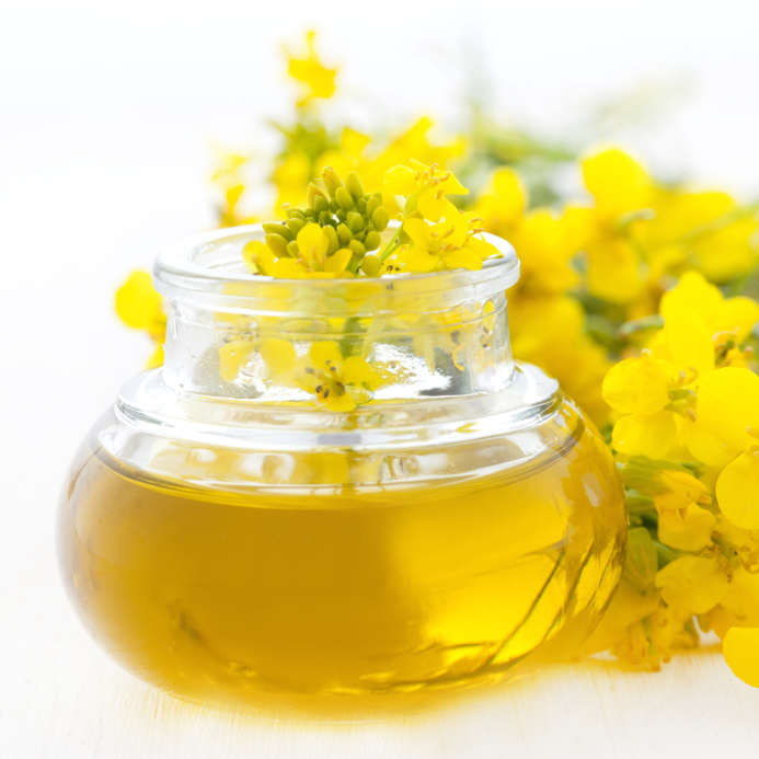 5. Canola - created in the early 1970s by Keith Downey and Baldur R. Stafansson.