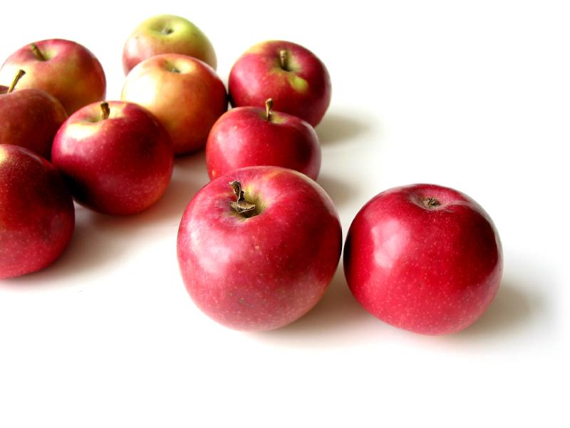 42. The McIntosh red apple - Developed by John McIntosh.
