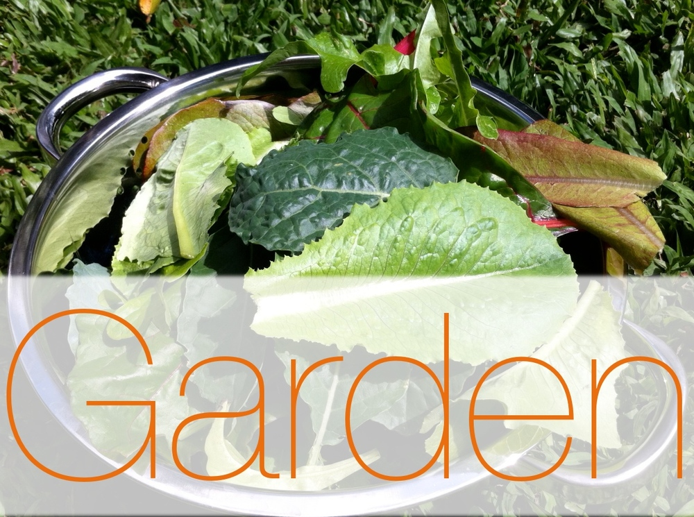 Garden Logs Link Image 2.jpg