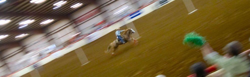 rode2.jpg