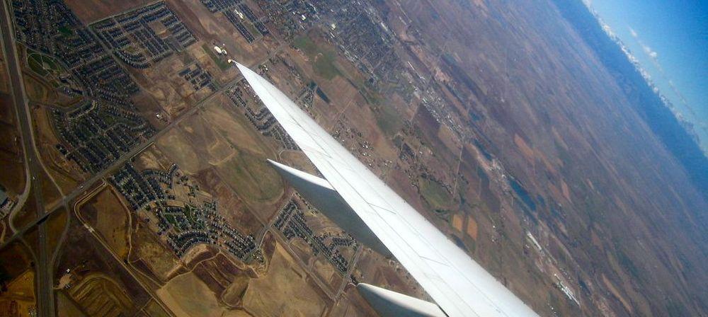 wing4.jpg