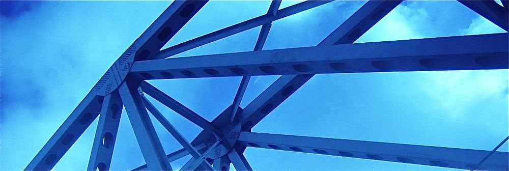 brid2.jpg