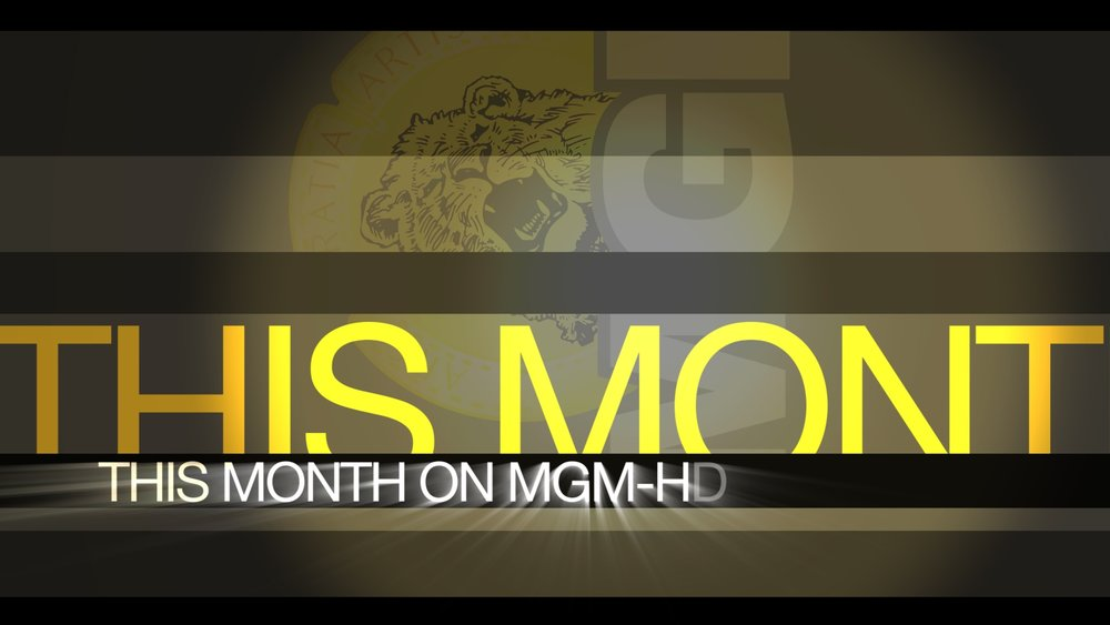 motion graphic design | MGM panels | jonberrydesign