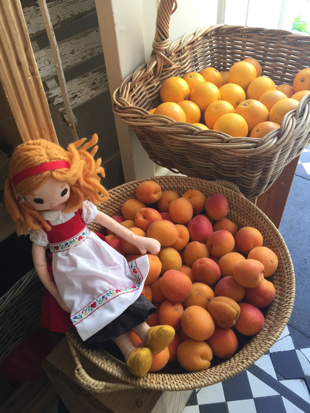 Phoebe tries to blend in with apricots in Bath