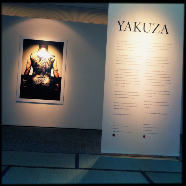 Installation view of YAKUZA at C-Mine in Genk, Belgium