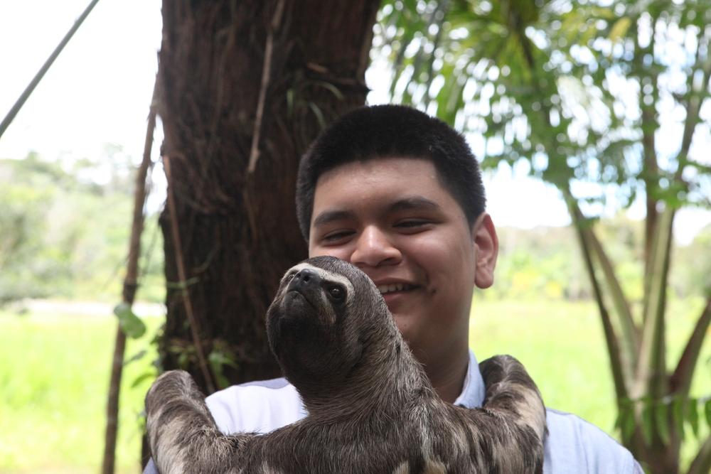 Sloth visit