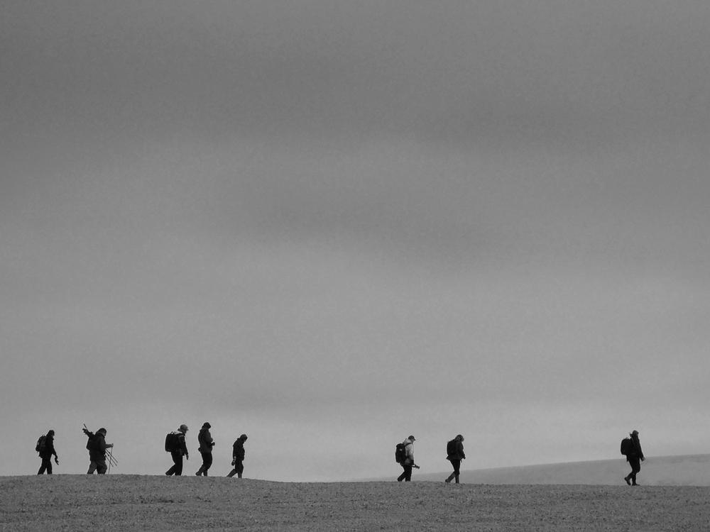 Polar Desert, Nordaustalndet, July 2012