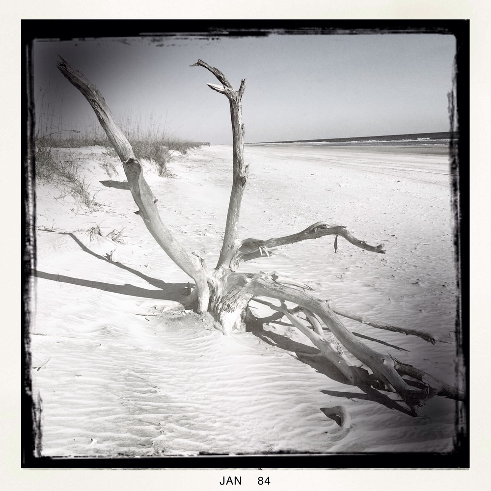 Little Talbot Island beach (Iphone 5S Hipstamatic)