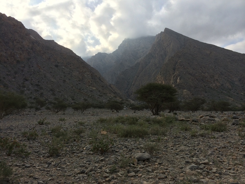 Al Hajar Mountains Feb 2014