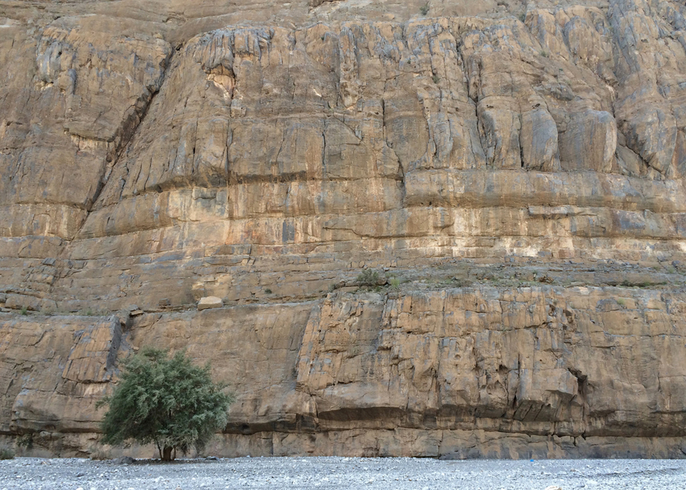 The steep canyon walls of Wadi Al Muaydin