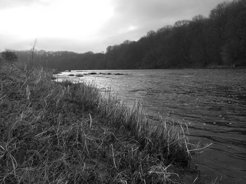River Ribble at Ribchester