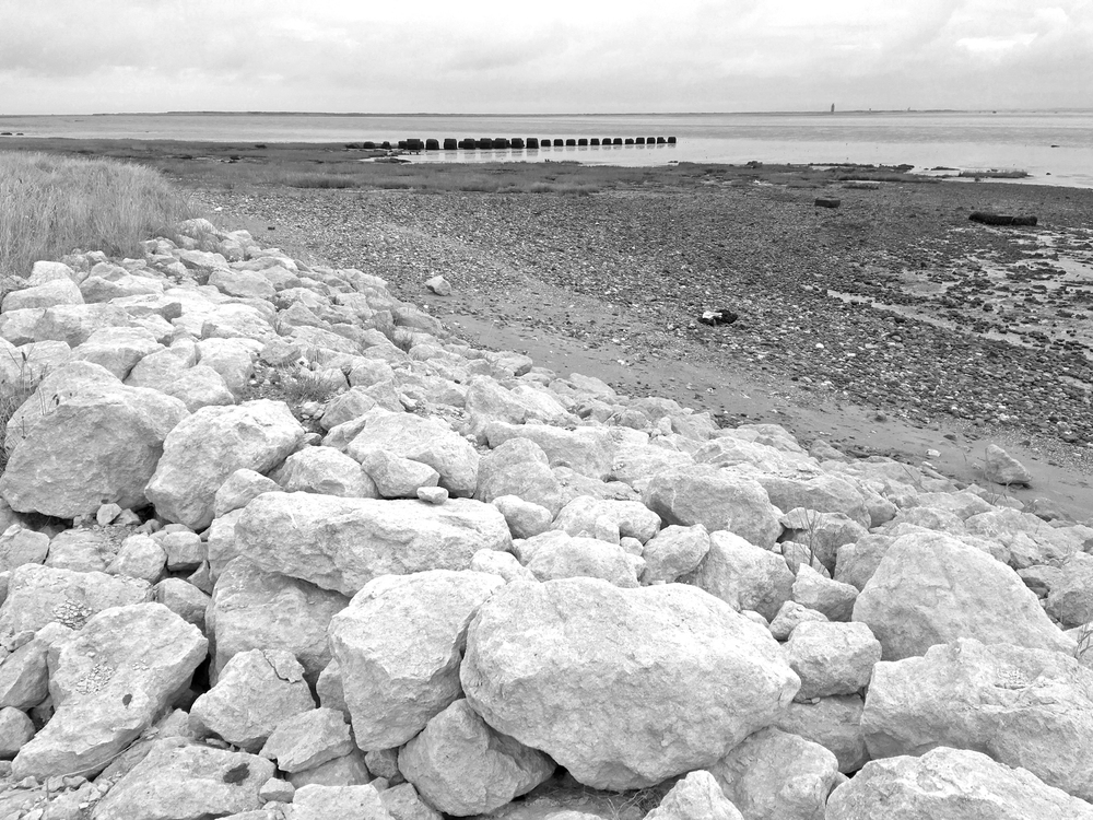 The Humber shore from the Canal.