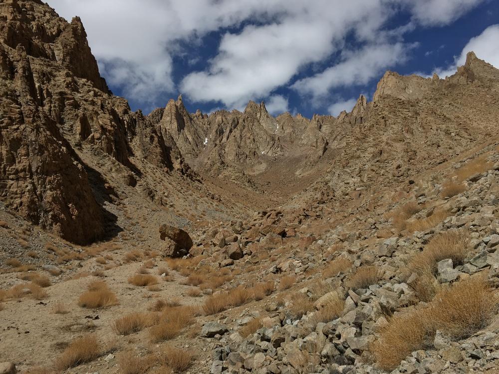 Spango Valley, Ladakh March 2016