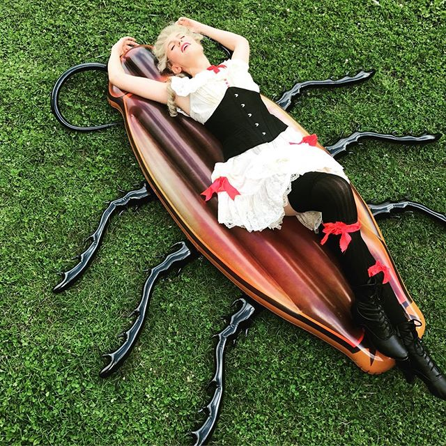 Things are getting kind of weird in Oklahoma, you guys.... #cockroach #pinupgirl #oklahoma #glimmerglassfestival #dontasktoomanyquestions
