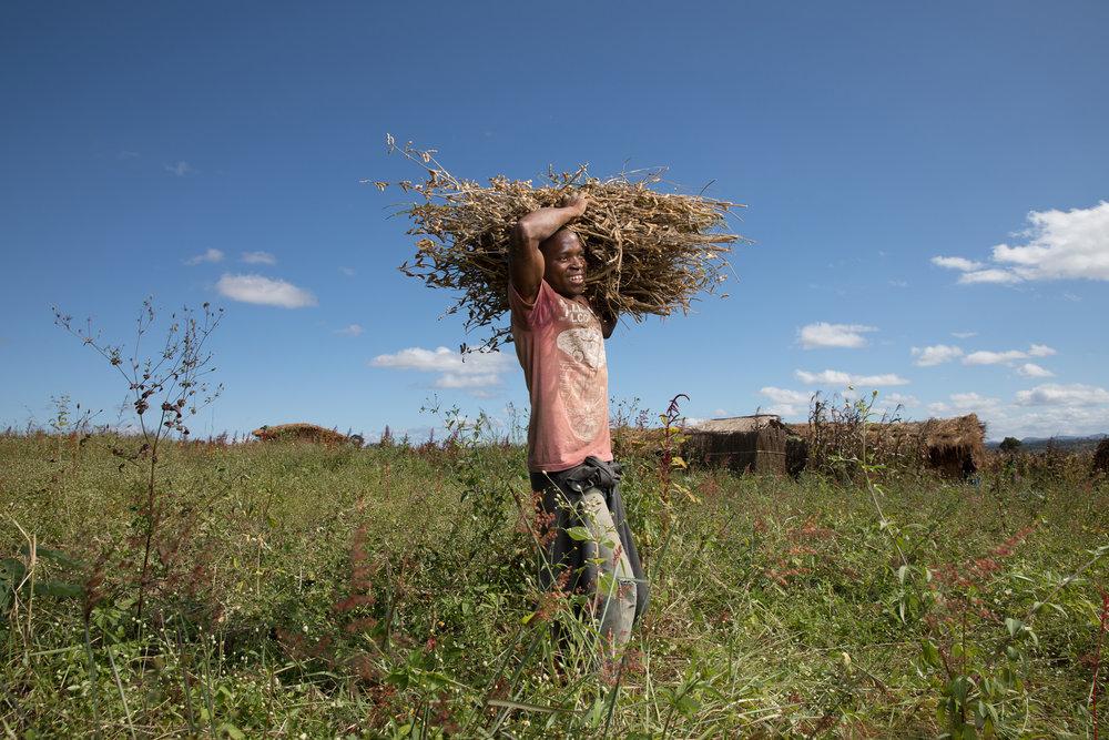 4748_Mozambique_SSRT_030517.jpg