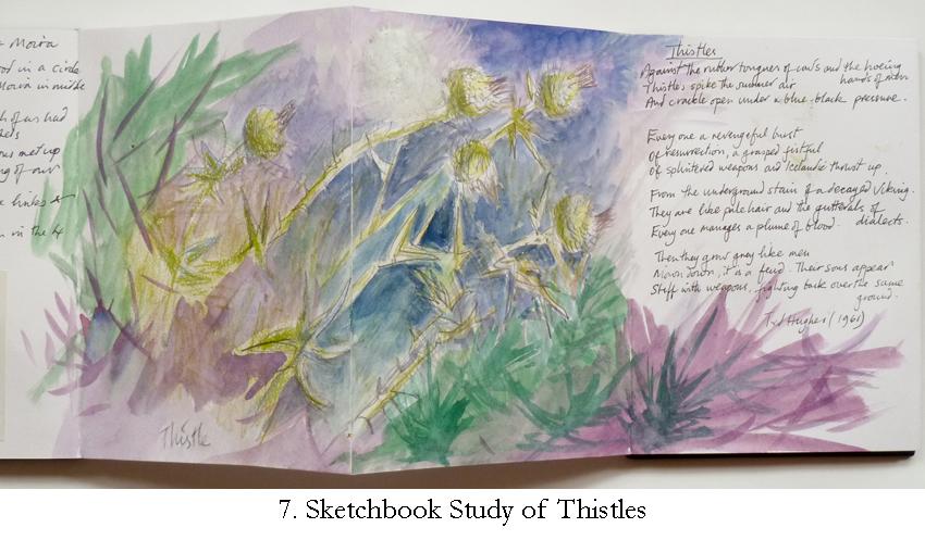 7 Thistles Study.jpg