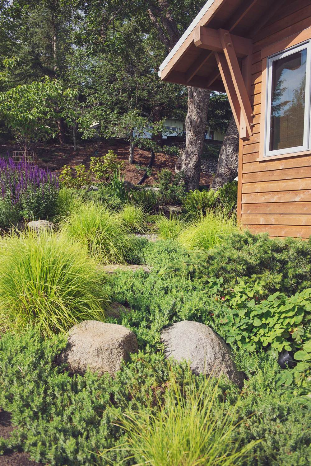 Foundation Plantings with Year-Round Interest